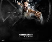 X-Men Origins: Wolverine Wallpaper - Wolverine